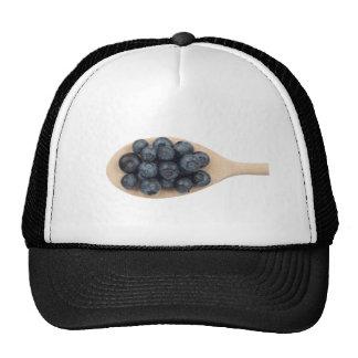 Blueberries Trucker Hats