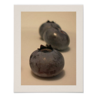 Blueberries I have Known 3 Poster