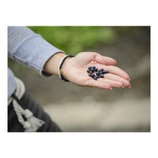 Blueberries Personalized Invites