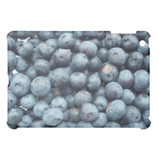 Blueberries iPad Case
