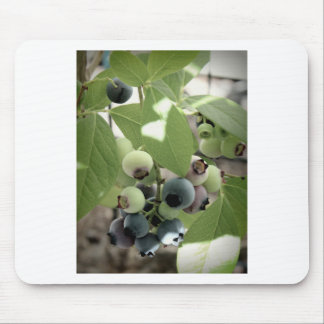 Blueberries Mouse Pad