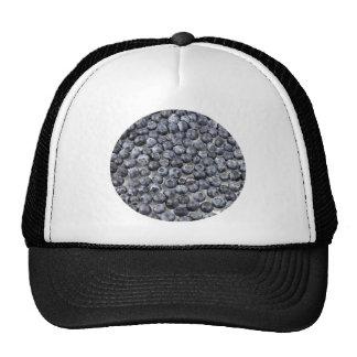 Blueberries on Glass Cap