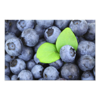 Blueberries Photo Art