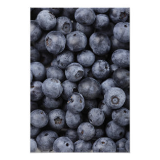 Blueberries Poster