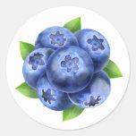 Blueberries round composition round sticker