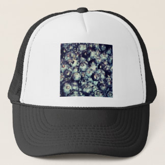 Blueberries Trucker Hat