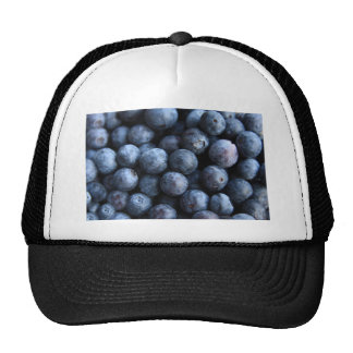 Blueberrry delicious trucker hats