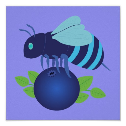 Blueberry Bee Posters