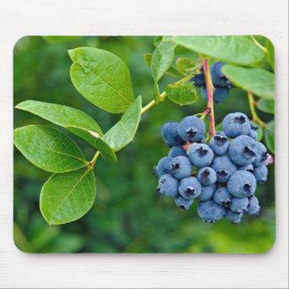 Blueberry Bush Mouse Pad
