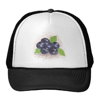 blueberry cap