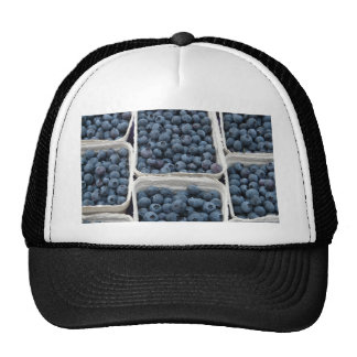 Blueberry Crates Cap