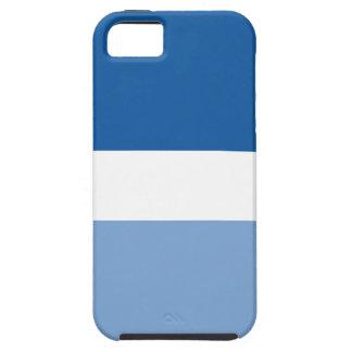 Blueberry Creme Vibe iPhone 5 Case iPhone 5 Case