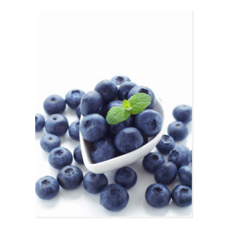 Blueberry isolated ON white Post Card