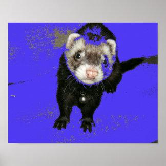 Blueberry Jam Ferret Poster