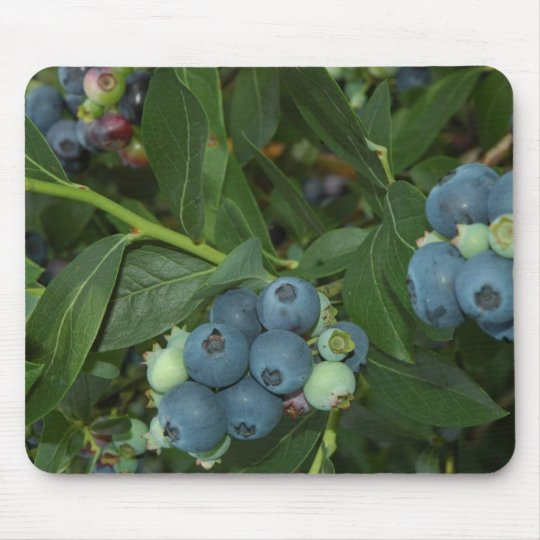 Blueberry Mouse Mat
