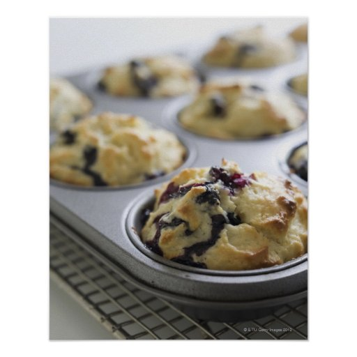 Blueberry muffins in a baking tin on a cooling posters