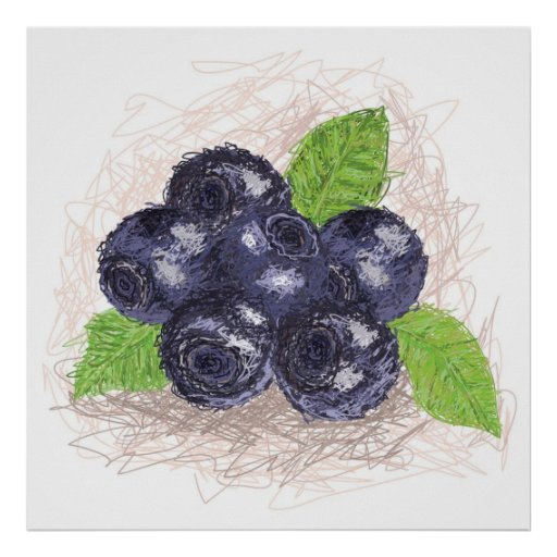 blueberry poster