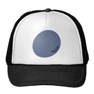 Blueberry Sideway Cap