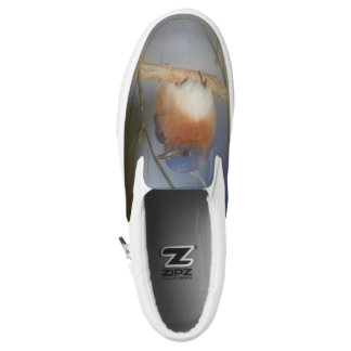 Bluebird Animal Nature Slip-On Shoes