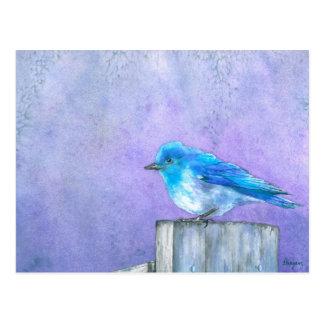 Bluebird Bliss Postcard