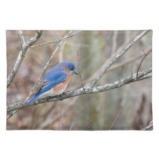 Bluebird Blue Bird in Tree Placemat