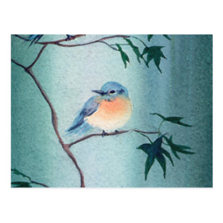 BLUEBIRD by SHARON SHARPE Postcard