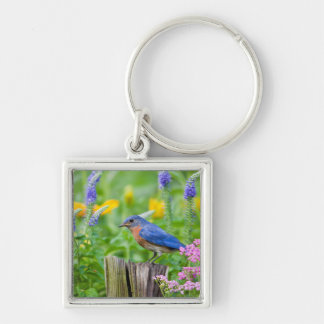 Bluebird male on fence post in flower garden Silver-Colored square key ring