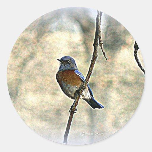 Bluebird of Happiness Sticker