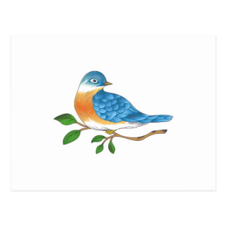 BLUEBIRD ON BRANCH POSTCARD