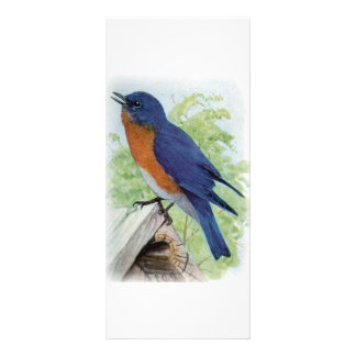 Bluebird Personalized Rack Card