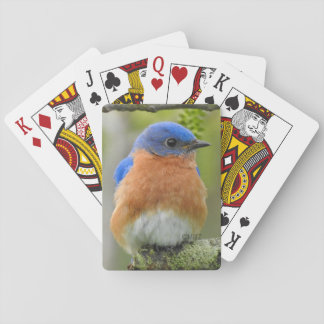 Bluebird Playing Cards