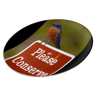 Bluebird, Please Conserve Porcelain Plates