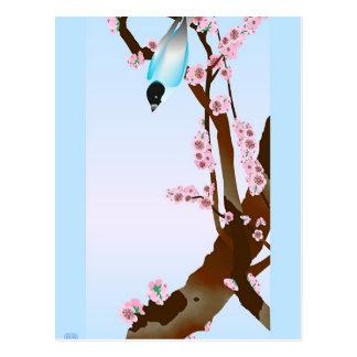 Bluebird - Postcard