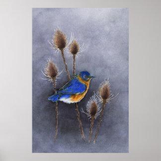 Bluebird Poster Print