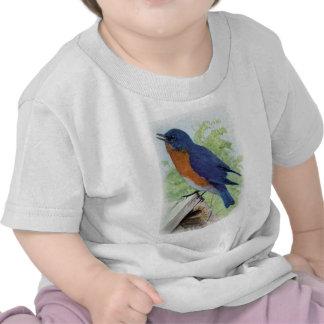 Bluebird Shirt
