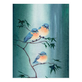 BLUEBIRDS by SHARON SHARPE Postcard