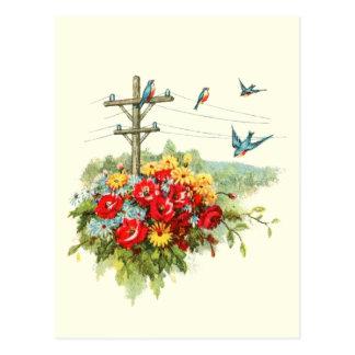 Bluebirds on Power Line Postcard