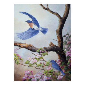 """Bluebirds"" UV Canvas Printes Poster"