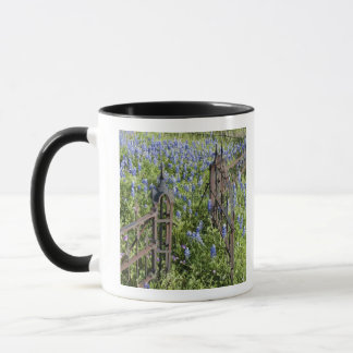 Bluebonnets and phlox surrounding cemetery gate mug