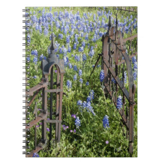 Bluebonnets and phlox surrounding cemetery gate spiral notebook