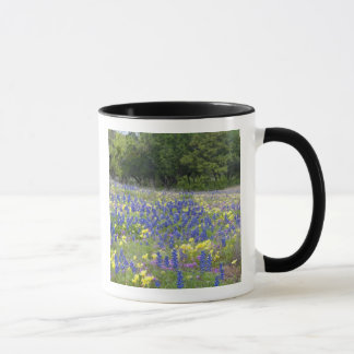 Bluebonnets, primrose, and phlox mug