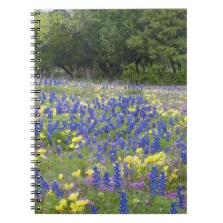 Bluebonnets, primrose, and phlox notebooks