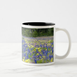 Bluebonnets, primrose, and phlox Two-Tone coffee mug