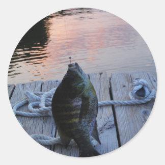 Bluegill at sunset Lake Arrowhead Round Sticker