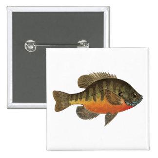 Bluegill Bream 15 Cm Square Badge