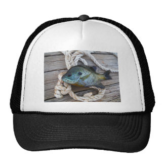 Bluegill fish on dock and rope trucker hats