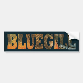 Bluegill Fishing Bumper Sticker