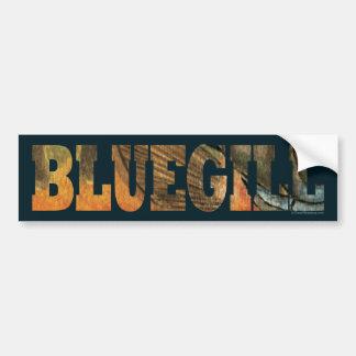 Bluegill Fishing Bumper Stickers