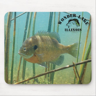 Bluegill Wonder Lake Mousepad
