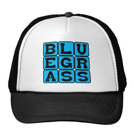 Bluegrass, American Roots Music Genre Mesh Hats